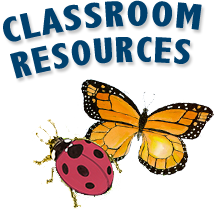 Classroom Resources